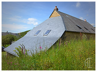 http://www.archilyon.fr/uploads/images/imRef/integration-maison-paysage.jpg